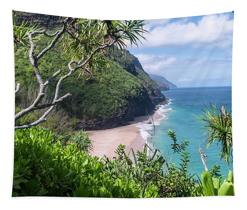 Na Pali Coast Tapestry featuring the photograph Hanakapiai Beach by Brian Harig