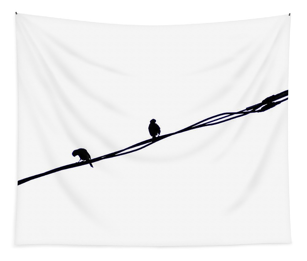 Bird Tapestry featuring the photograph Hangin Out by Bill Cannon