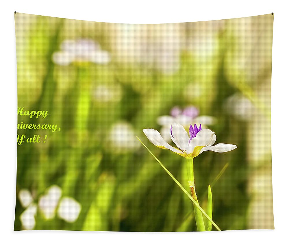 Happy Anniversary Tapestry featuring the photograph Happy Anniversary African Iris by Kay Brewer