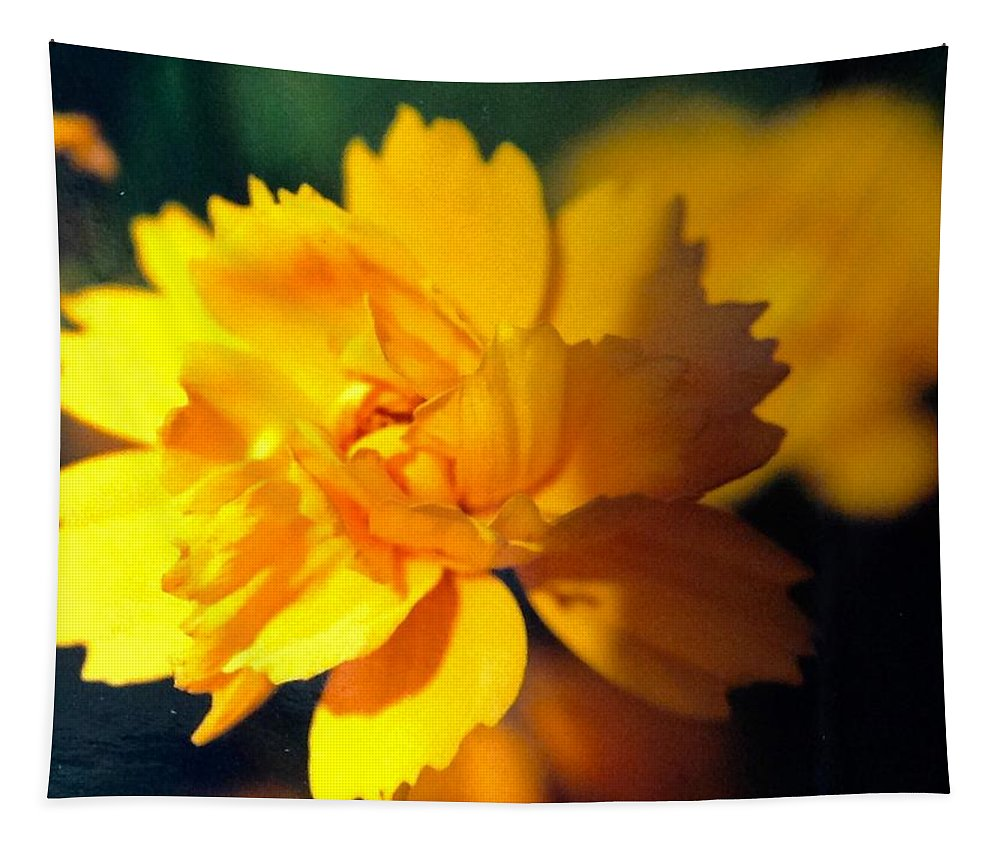 Yellow Tapestry featuring the photograph Happy Yellow Flower by Debra Lynch
