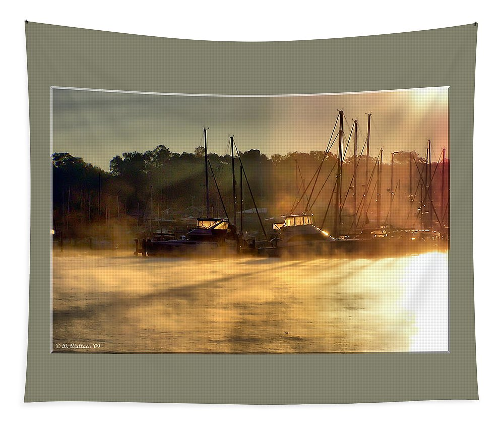 2d Tapestry featuring the photograph Harbor Mist by Brian Wallace