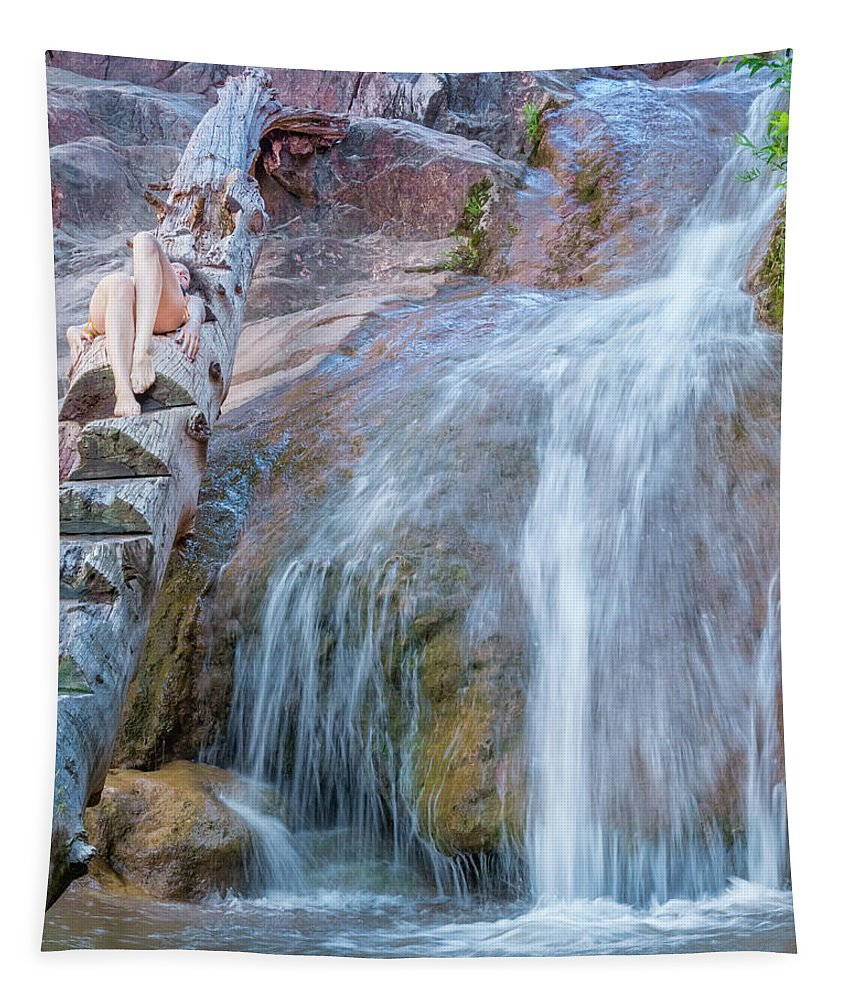 Waterfall Tapestry featuring the photograph Harmony At The Falls by Daniel Dean