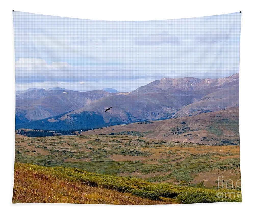 Mount Evans Wilderness Tapestry featuring the photograph Hawk Soaring Over Guanella Pass In The Arapahoe National Forest by Steve Krull