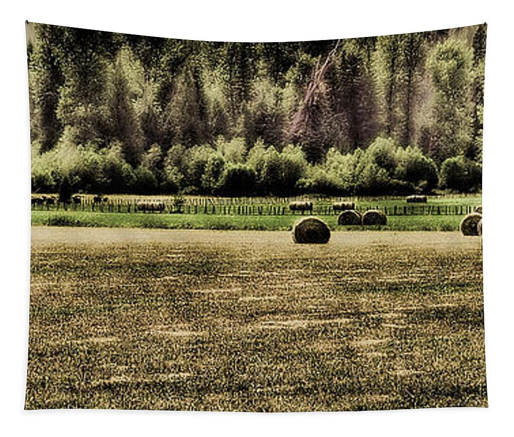 Hay Bales Tapestry featuring the photograph Hay Harvest by David Patterson