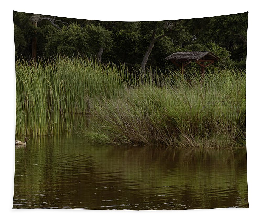 Landscape Tapestry featuring the photograph Heading Home by Leticia Latocki