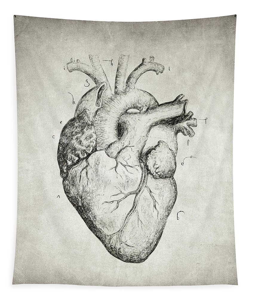 Heart Drawing Tapestry featuring the drawing Heart by Zapista Zapista