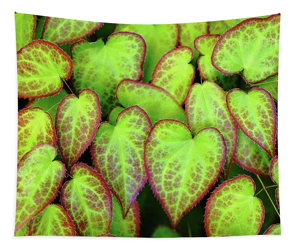 Hearts Tapestry featuring the photograph Hearts In Nature by Debbie Oppermann