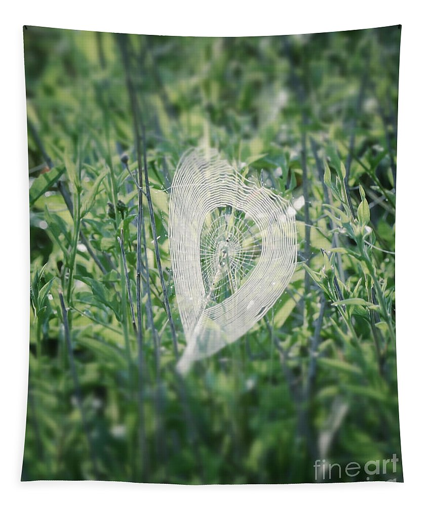 Hearts In Nature Tapestry featuring the photograph Hearts In Nature - Heart Shaped Web by Kerri Farley