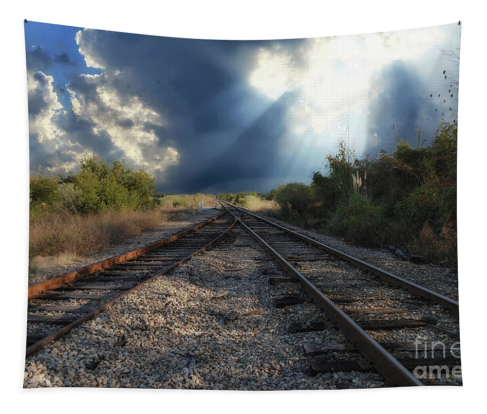 Train Tracks Tapestry featuring the photograph Heavenly Decision by Dale Powell