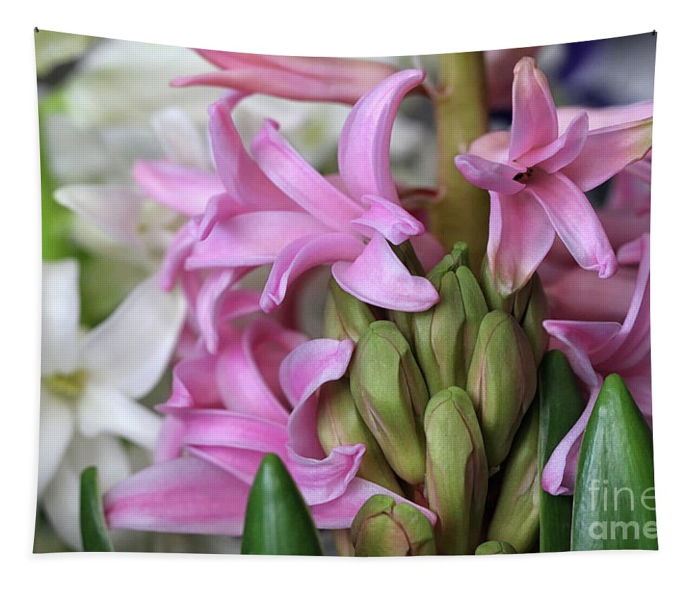 Pink Hyacinth Tapestry featuring the photograph Heavenly Hyacinths by Karen Adams
