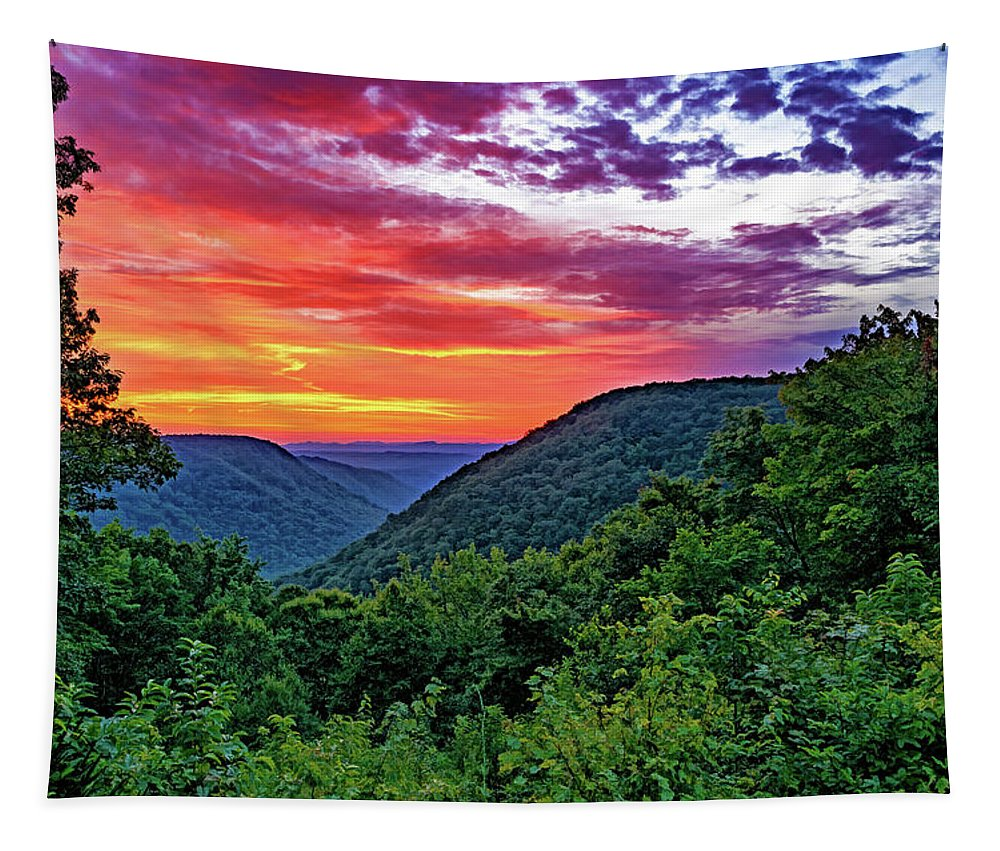 Babcock State Park Tapestry featuring the photograph Heaven's Gate - West Virginia - Paint by Steve Harrington