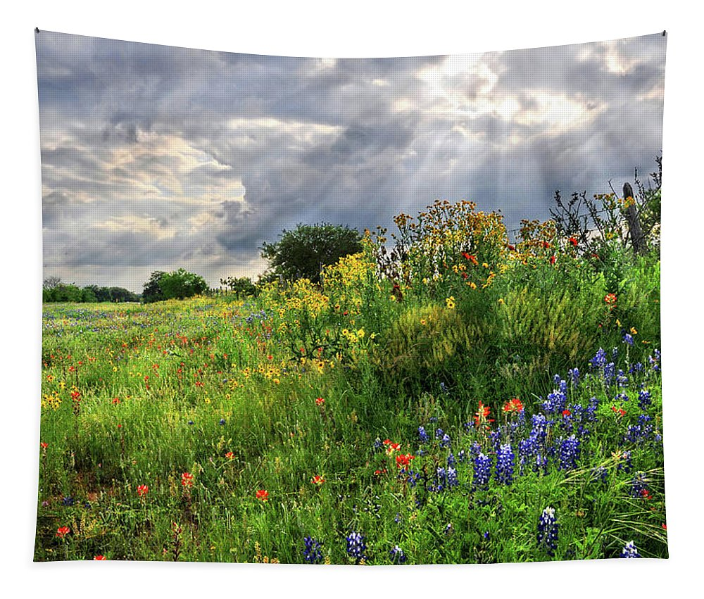 Wildflowers Tapestry featuring the photograph Heaven's Light by Lynn Bauer