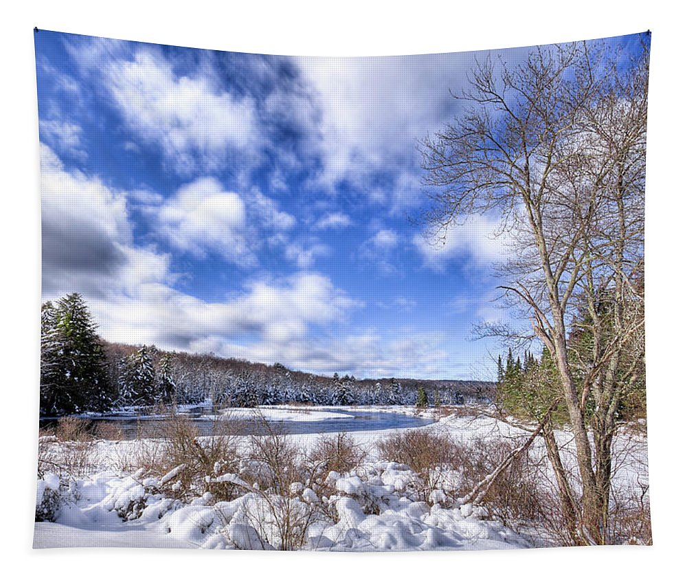 Landscapes Tapestry featuring the photograph Heavy Snow At The Green Bridge by David Patterson