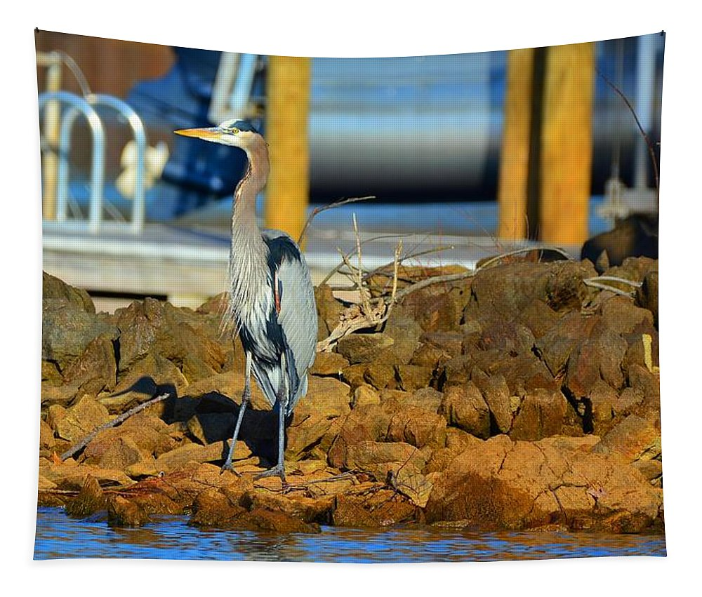 Heron Along The Shore Tapestry featuring the photograph Heron Along The Shore by Lisa Wooten