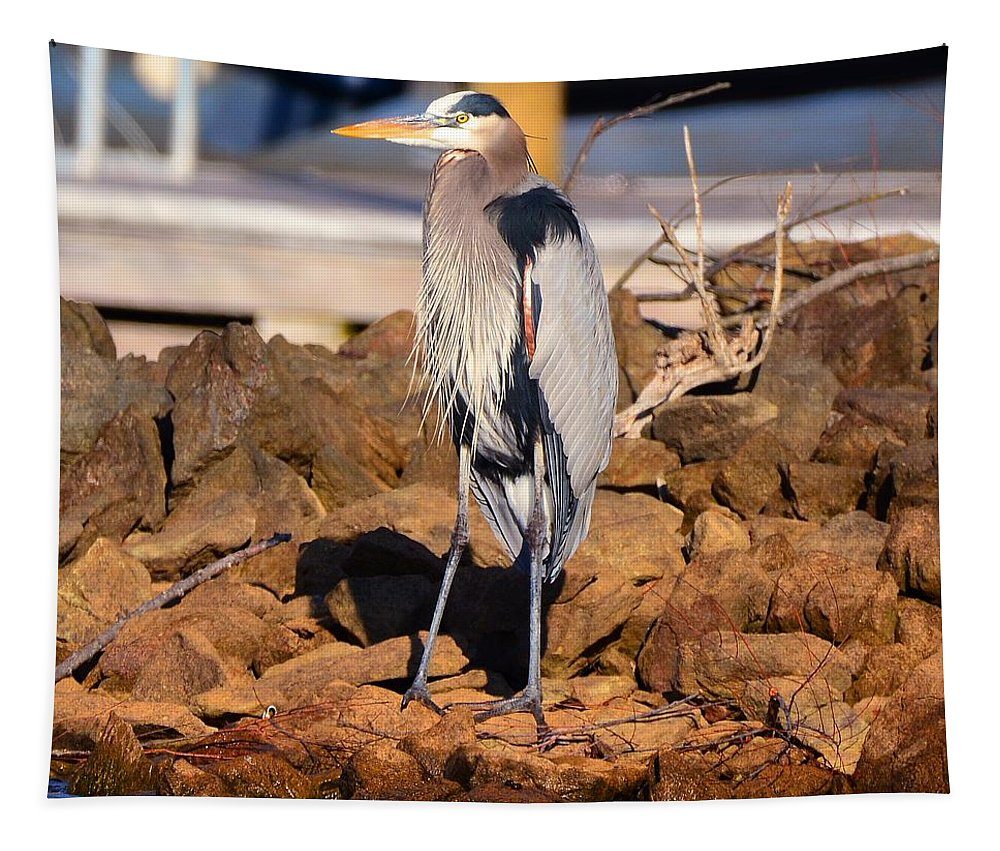 Heron On The Rocks Tapestry featuring the photograph Heron On The Rocks by Lisa Wooten