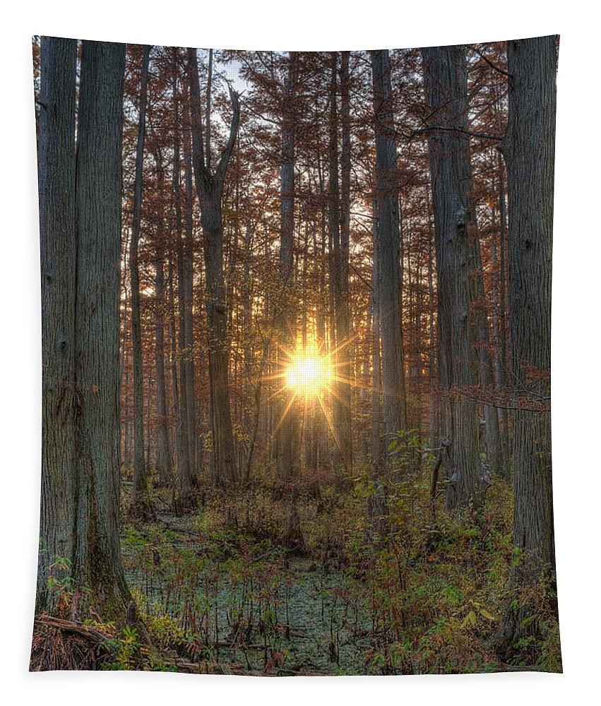 Illinois Tapestry featuring the photograph Heron Pond Sunrise by Steve Gadomski