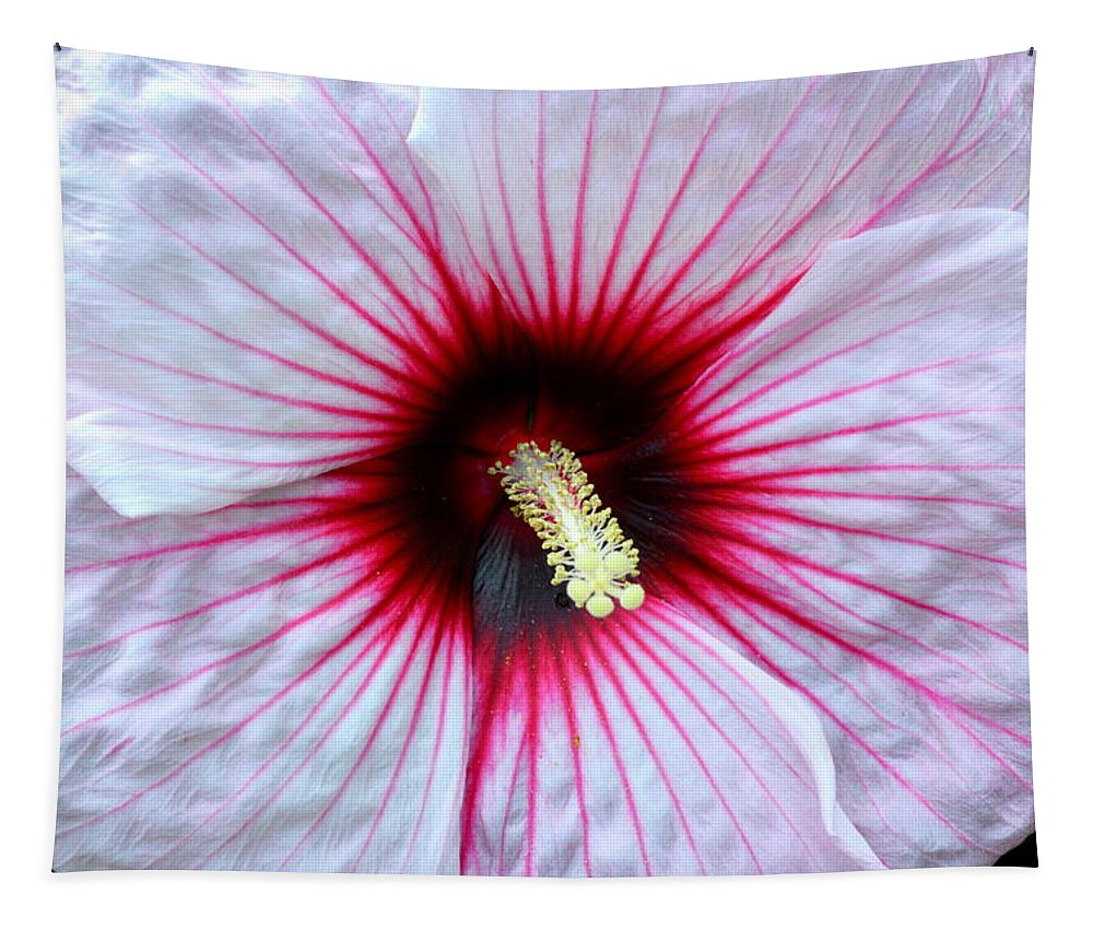 Hibiscus Tapestry featuring the photograph Hibiscus by Linda Covino