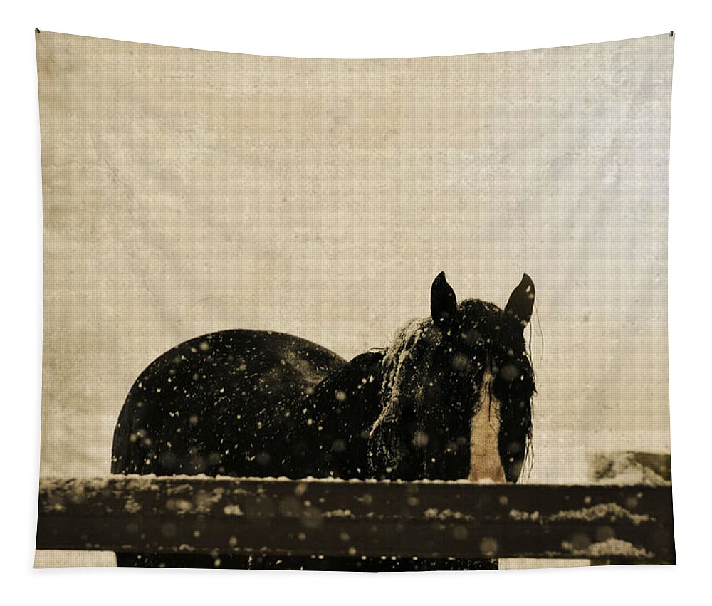 Horse Tapestry featuring the mixed media Hickory by Trish Tritz