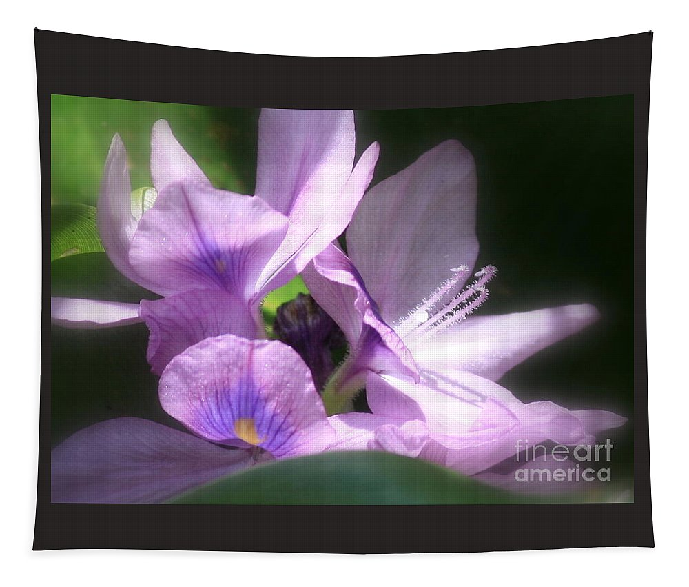 Flower Tapestry featuring the photograph Hidden Gem In The Swamp by Carol Groenen