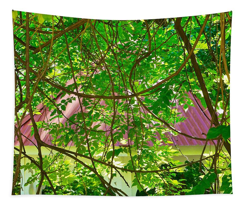 Hidden Tapestry featuring the photograph Hidden In The Garden by Gary Richards
