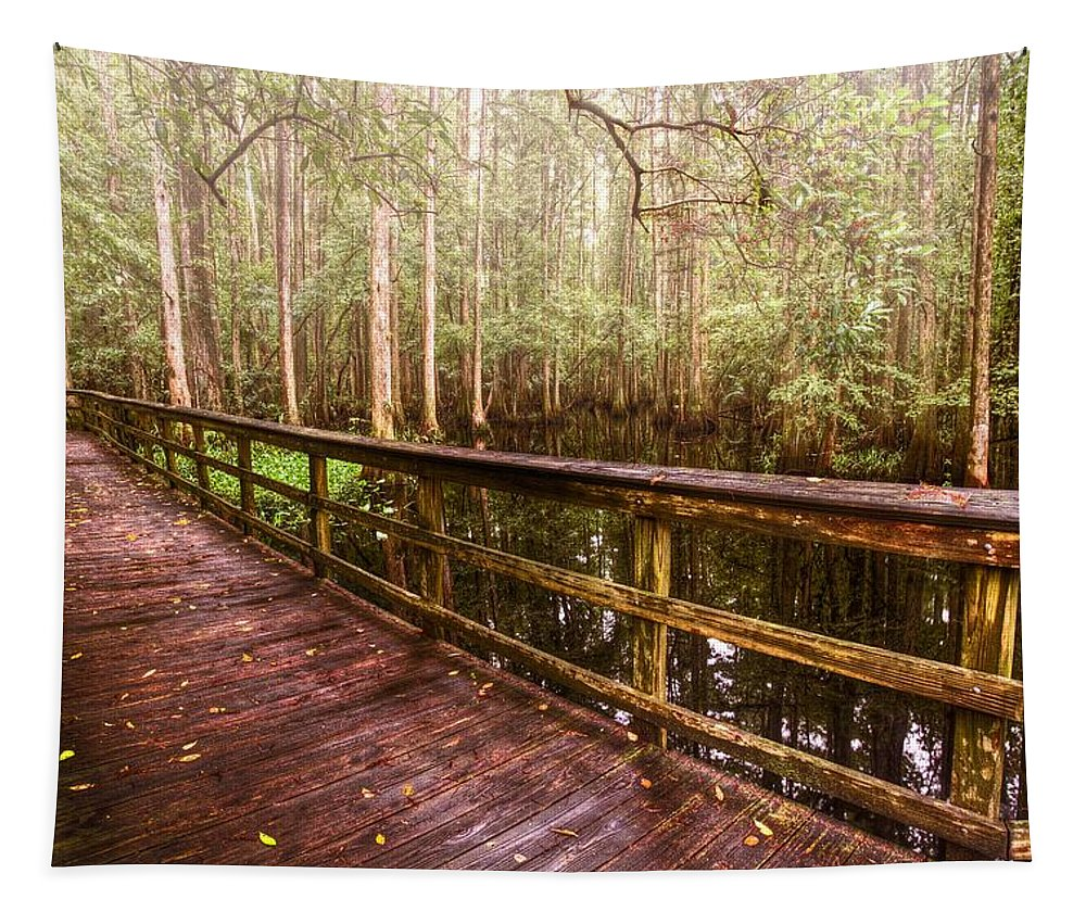 Everglades Tapestry featuring the photograph Highlands Hammock by Debra and Dave Vanderlaan