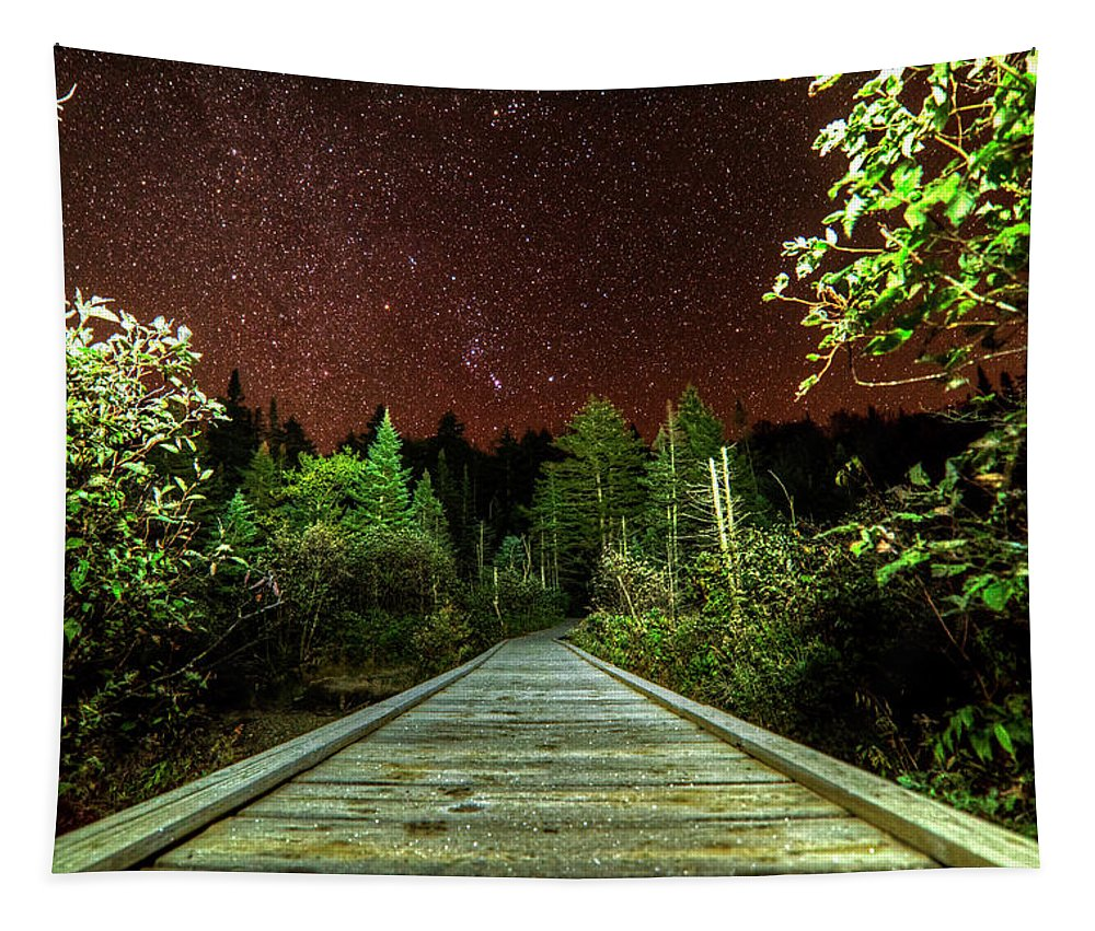 Adirondack Tapestry featuring the photograph Hiking Into The Night Adirondack Log Keene Valley Ny New York by Toby McGuire