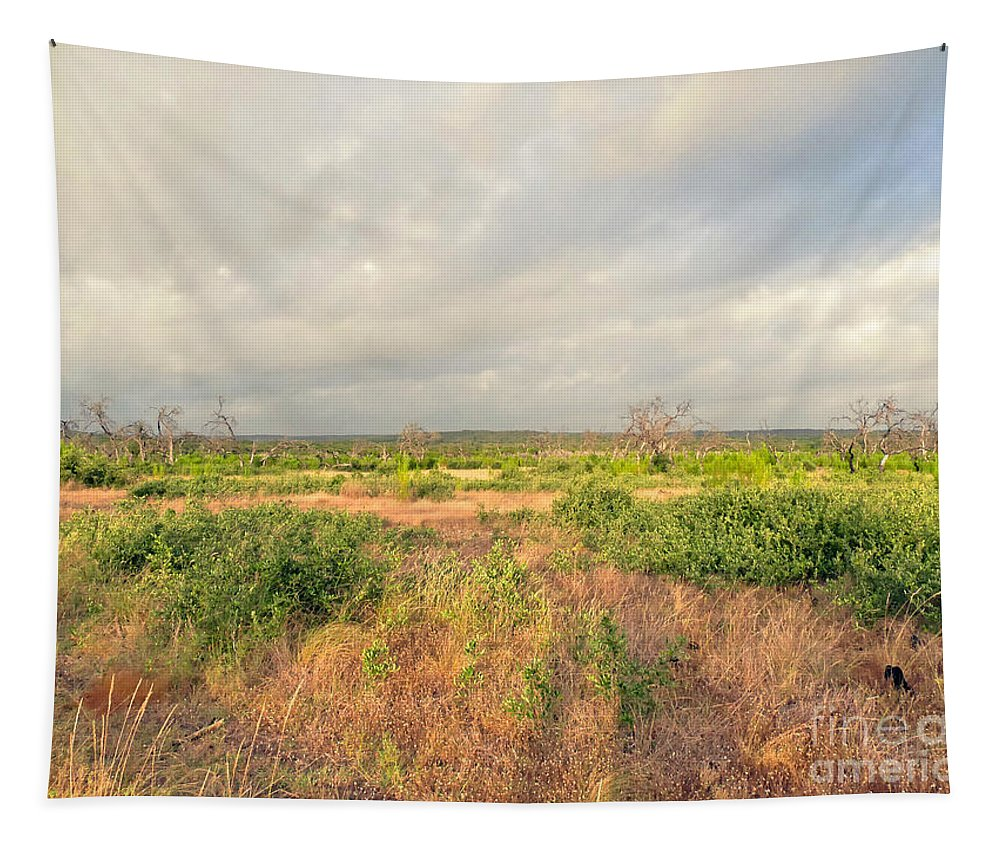 Memories Tapestry featuring the photograph Hill Country Memories by Gary Richards