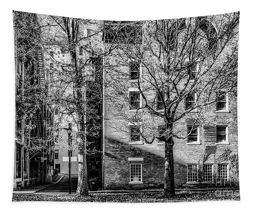 Historic Tapestry featuring the photograph Historic Rochester by William Norton