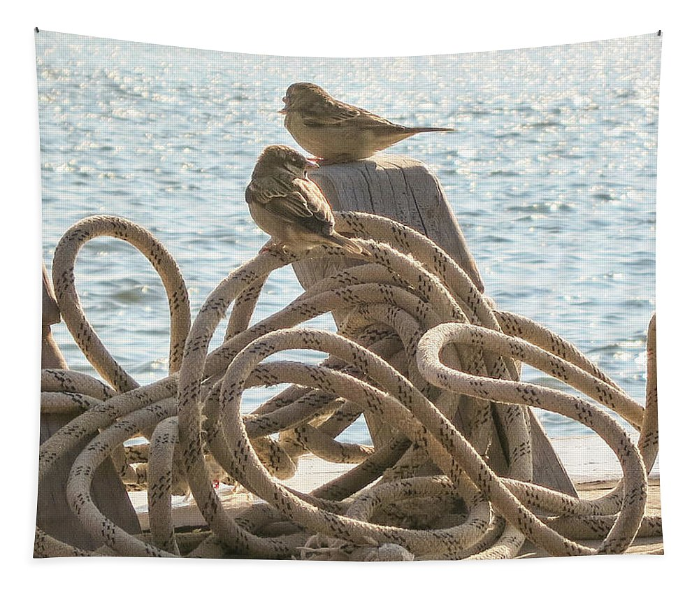 Hitching A Ride Tapestry featuring the photograph Hitching A Ride by Phyllis Taylor