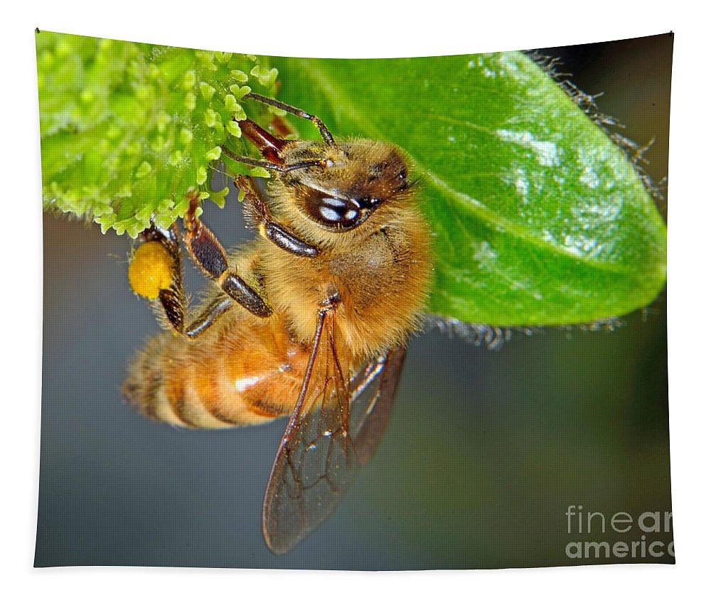 Honey Tapestry featuring the photograph Honeybee by Brad Christensen