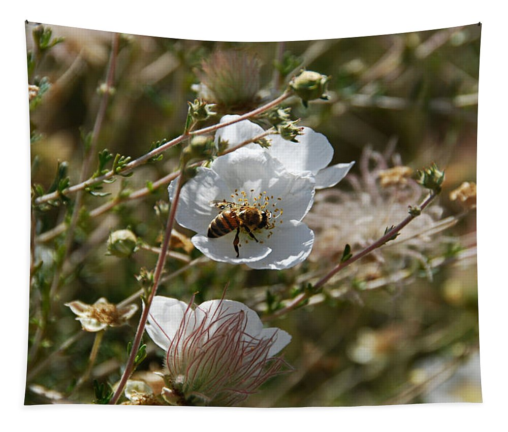 Bee Tapestry featuring the photograph Honeybee Gathering From A White Flower by Katherine Nutt