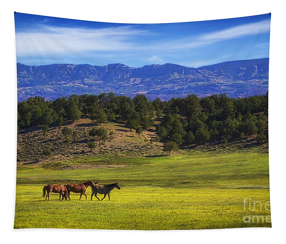 Horse Play Tapestry featuring the photograph Horse Play by Priscilla Burgers
