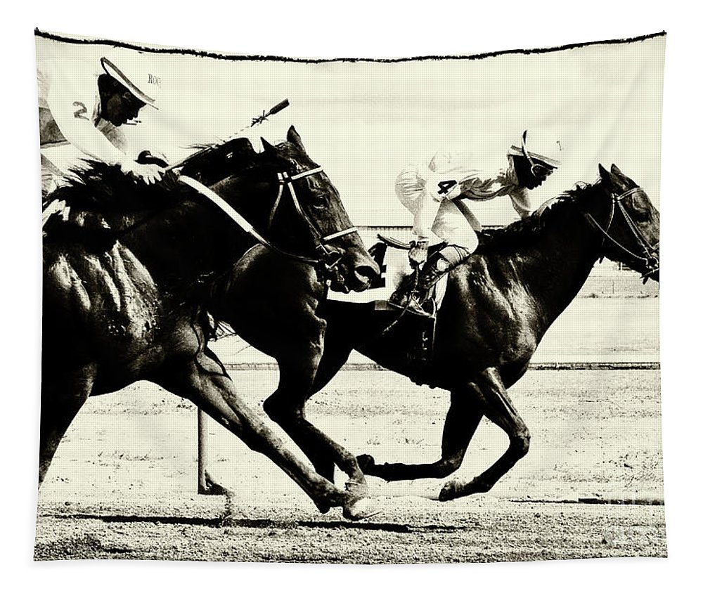 Horse. Horses Tapestry featuring the photograph Horse Power 13 by Bob Christopher