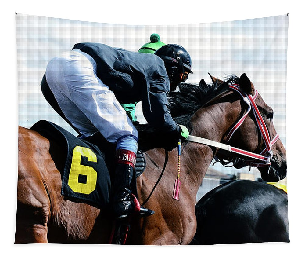 Horse. Horses Tapestry featuring the photograph Horse Power 14 by Bob Christopher