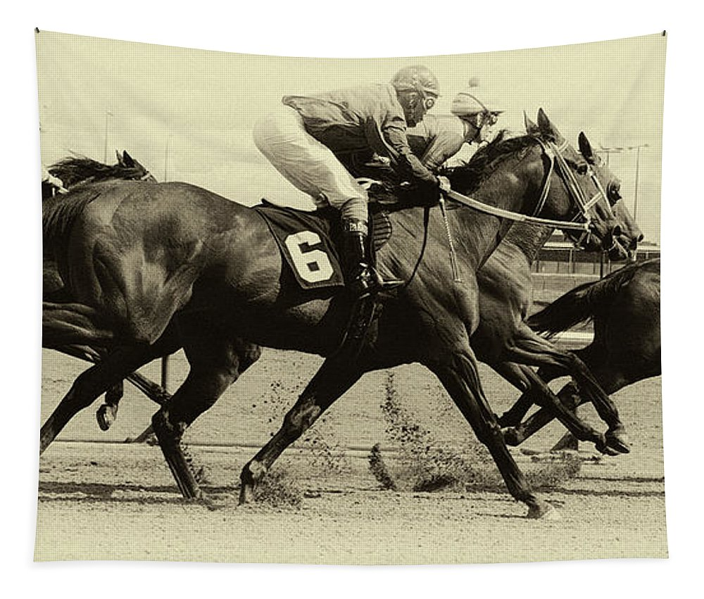 Horse. Horses Tapestry featuring the photograph Horse Power 15 by Bob Christopher