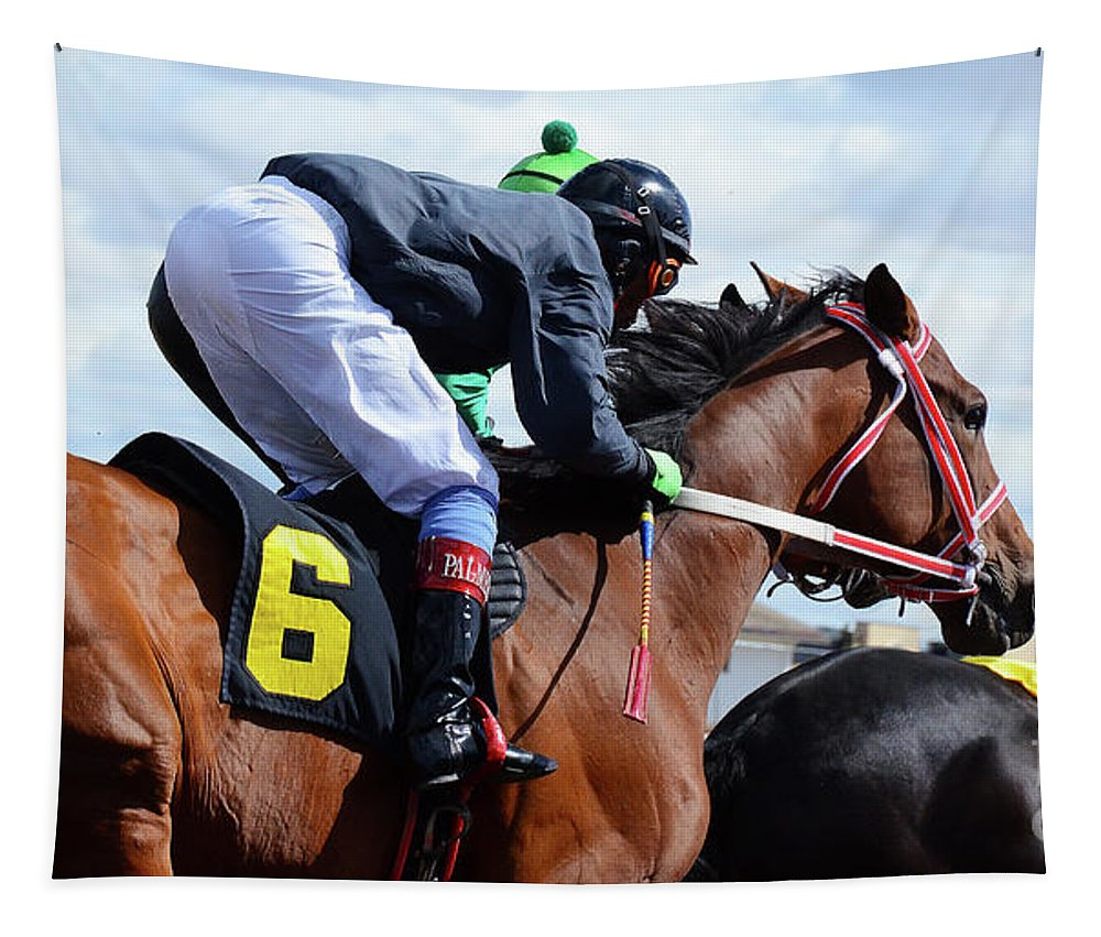 Horse. Horses Tapestry featuring the photograph Horse Power 8 by Bob Christopher