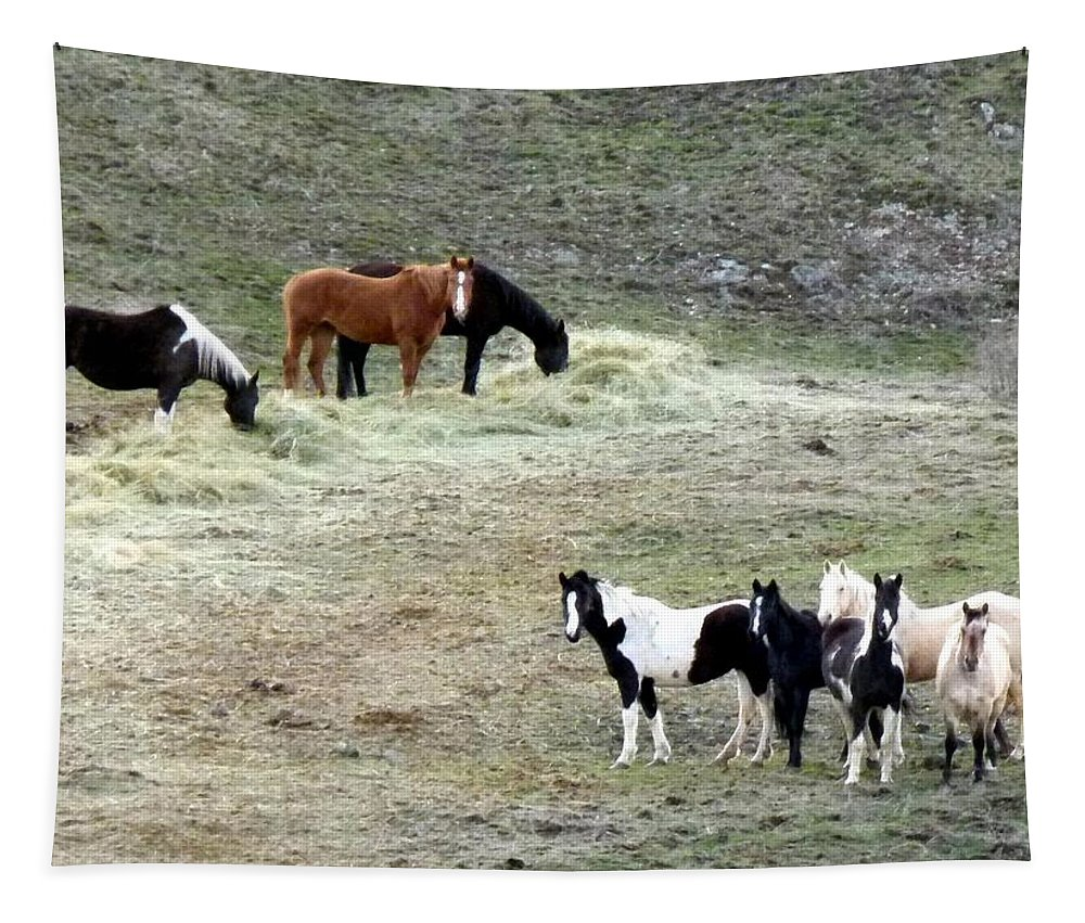 Horses Tapestry featuring the photograph Horses In The Highlands by Will Borden