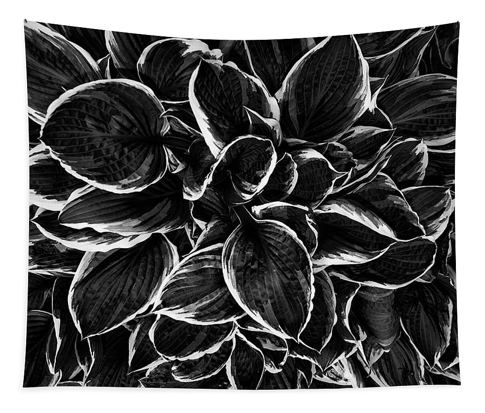 Hosta Tapestry featuring the photograph Hosta In Black And White by Mark Kiver