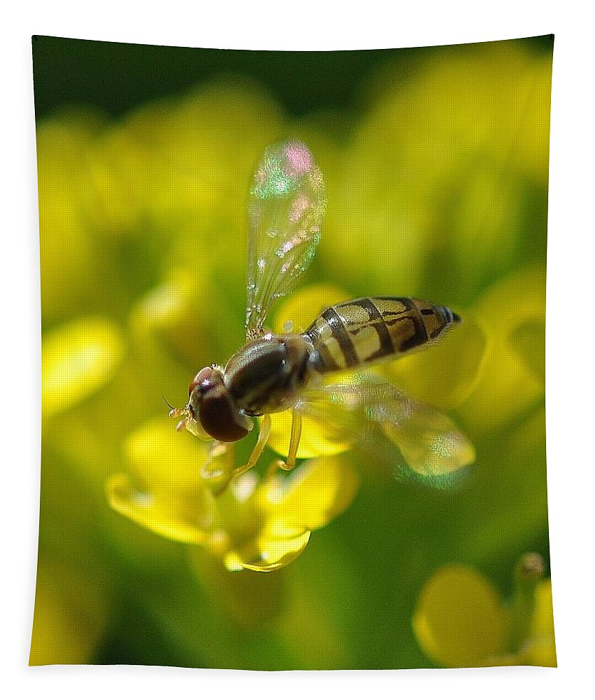 Hoverfly Tapestry featuring the photograph Hoverfly On Yellow Flower by Barbara Treaster
