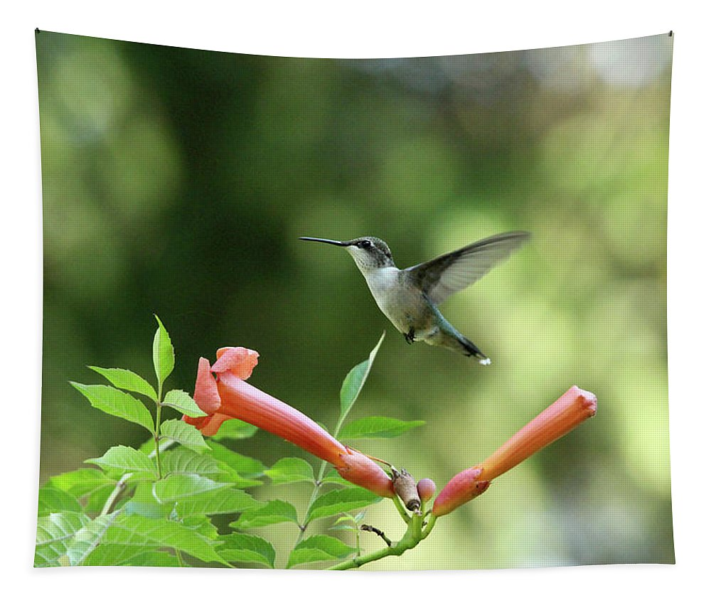 Hummingbird Tapestry featuring the photograph Hovering Hummingbird by Debbie Oppermann