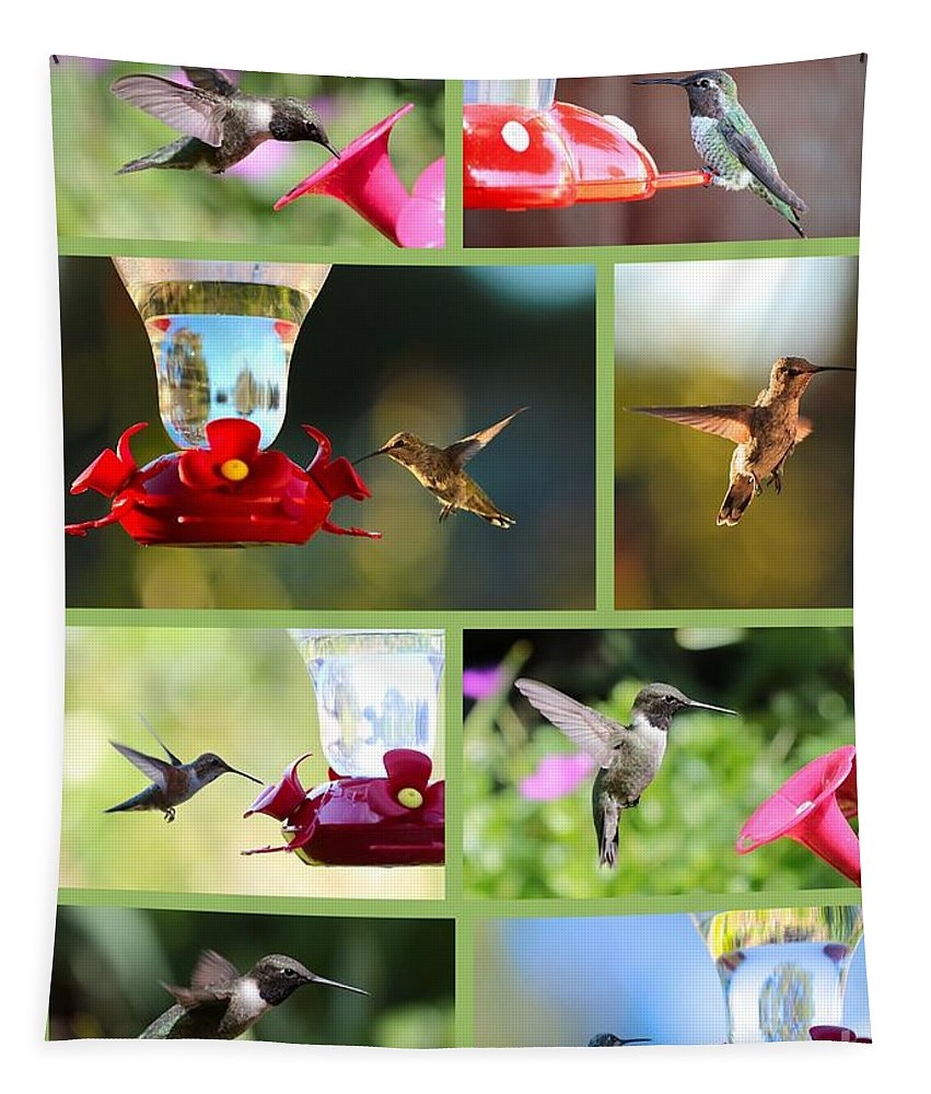 Hummingbird Tapestry featuring the photograph Hummingbird Collage 2 by Carol Groenen
