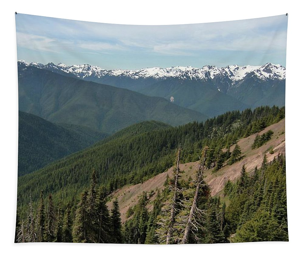 Hurricane Ridge View Tapestry featuring the photograph Hurricane Ridge View by Dan Sproul