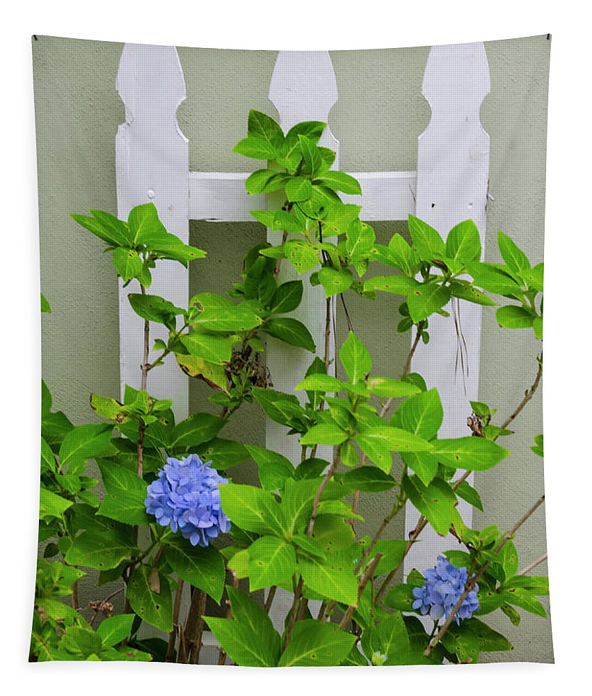 Hydrangea Tapestry featuring the photograph Hydrangea Blooming In October by Dale Powell