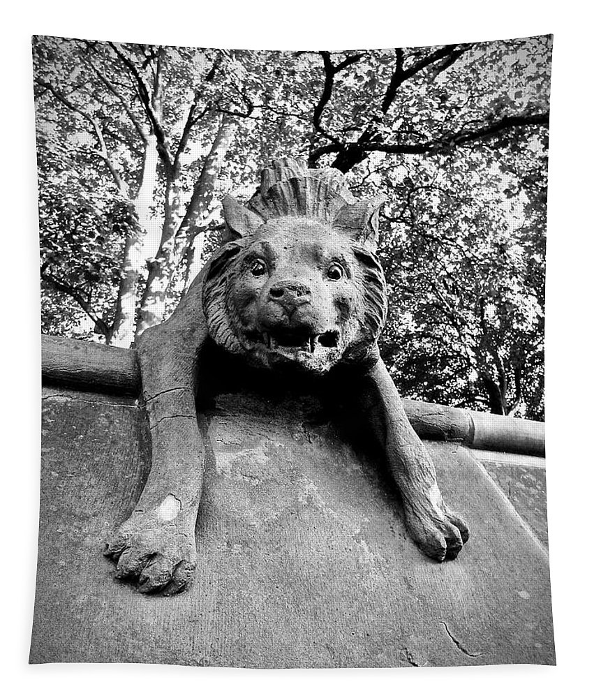 Hyena Tapestry featuring the photograph Hyena On The Wall by Rachel Morrison