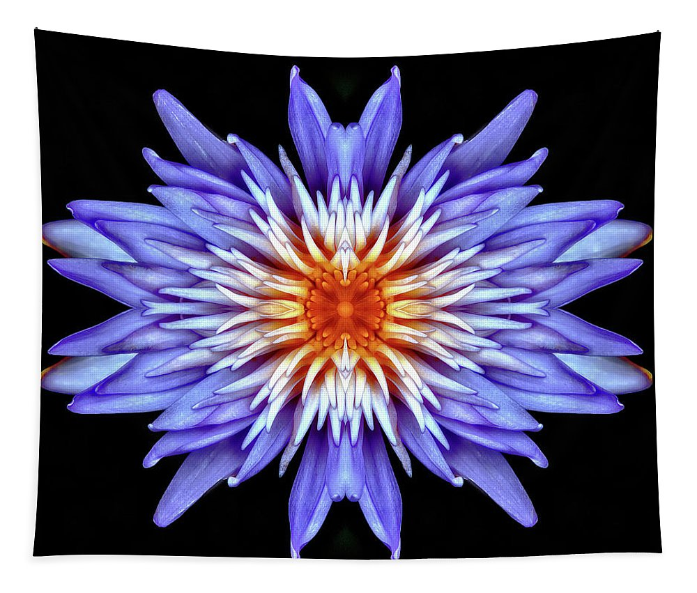 Hypnotic Tapestry featuring the photograph Hypnotic by Wes and Dotty Weber