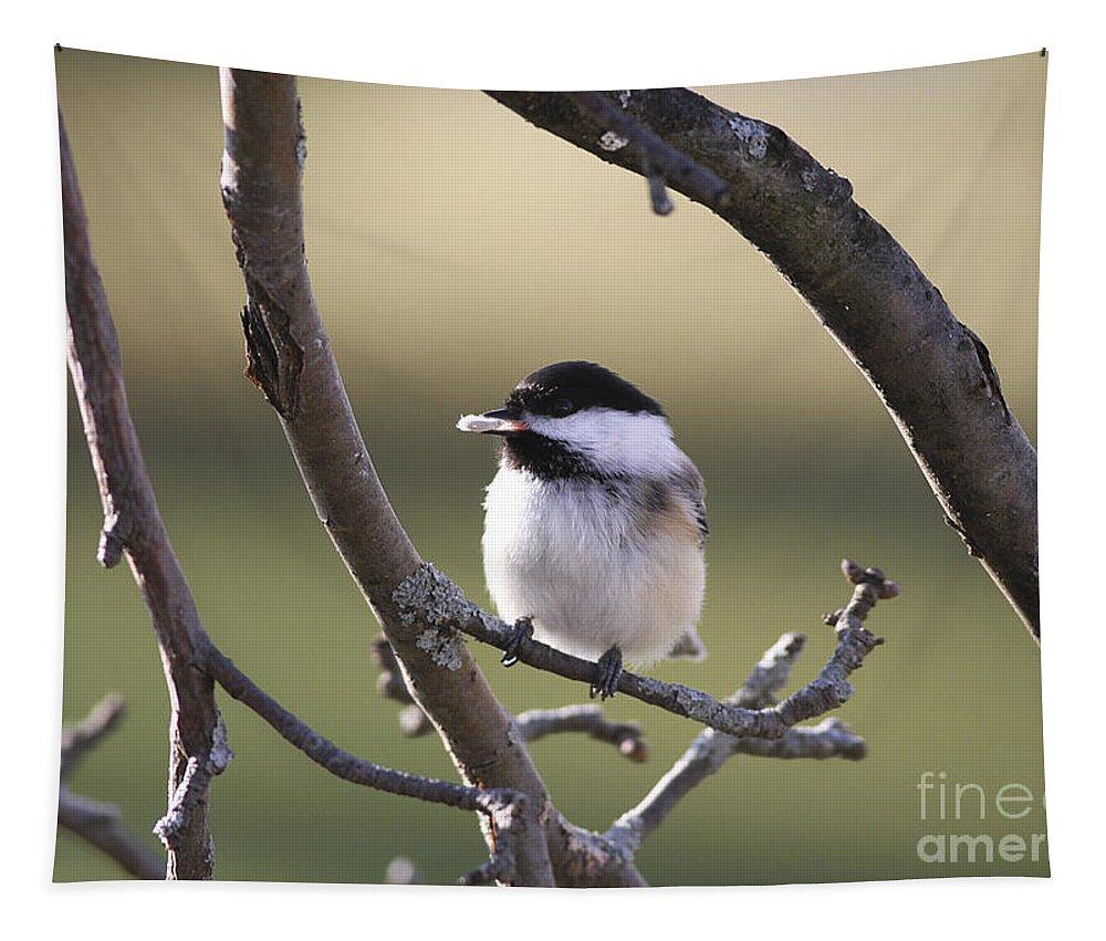 Bird Tapestry featuring the photograph I Finally Got It by Deborah Benoit