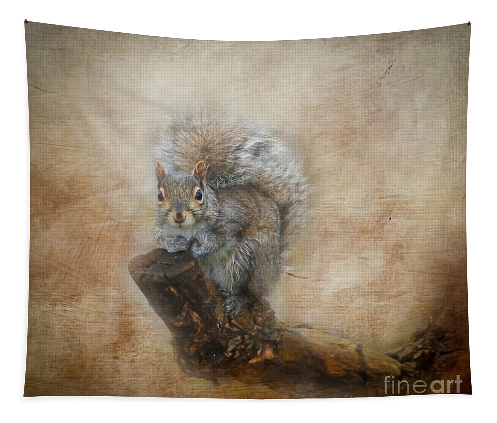 Squirrel Tapestry featuring the photograph I Have A Secret by Kerri Farley