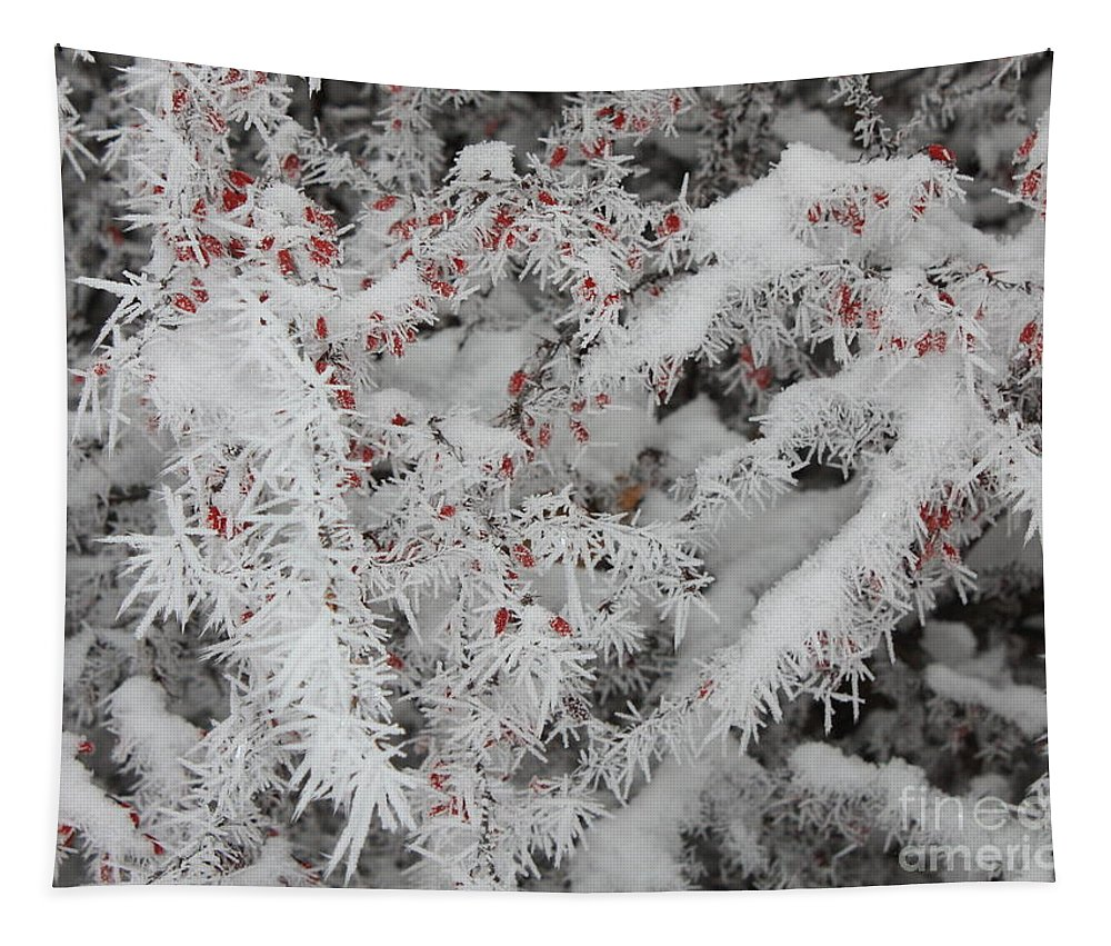 Heart Tapestry featuring the photograph I Love Winter by Carol Groenen