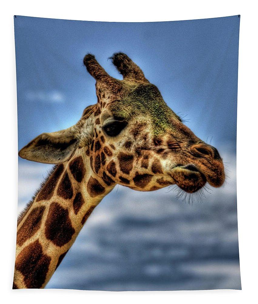 Giraffe Tapestry featuring the photograph I See You by Saija Lehtonen