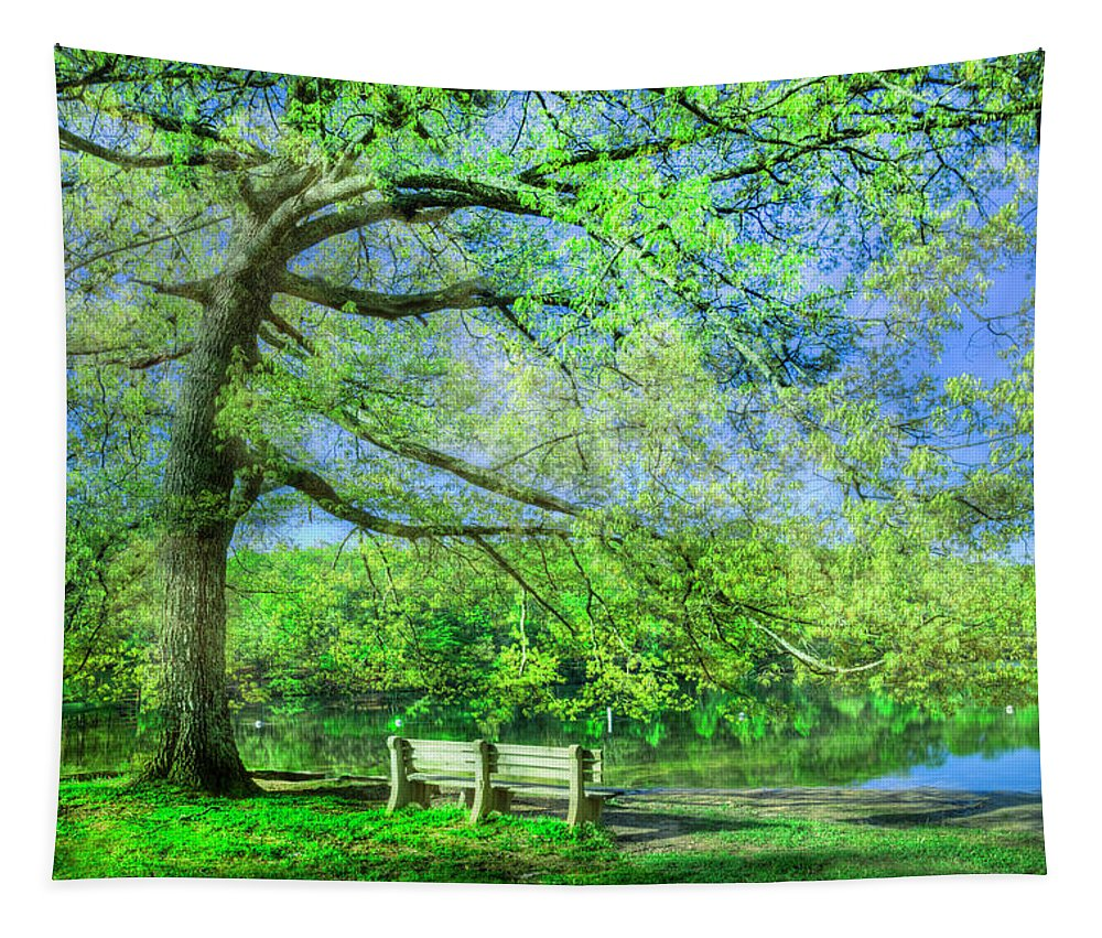 Appalachia Tapestry featuring the photograph I Will Wait For You In Summer by Debra and Dave Vanderlaan